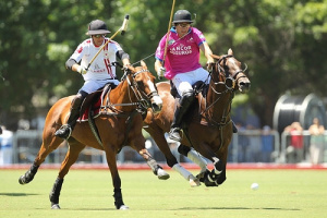 FACE TO FACE: POLO TRAINING