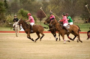 DETERMINACIÓN DEL HANDICAP DE POLO (2014)