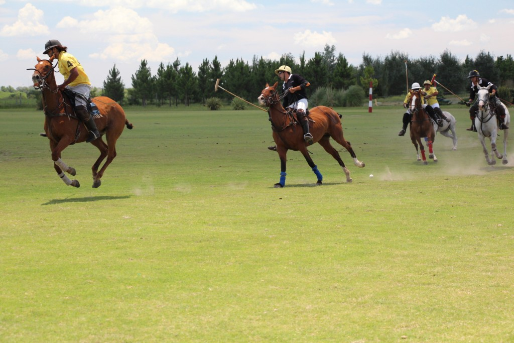 SOME BASIC POLO RULES