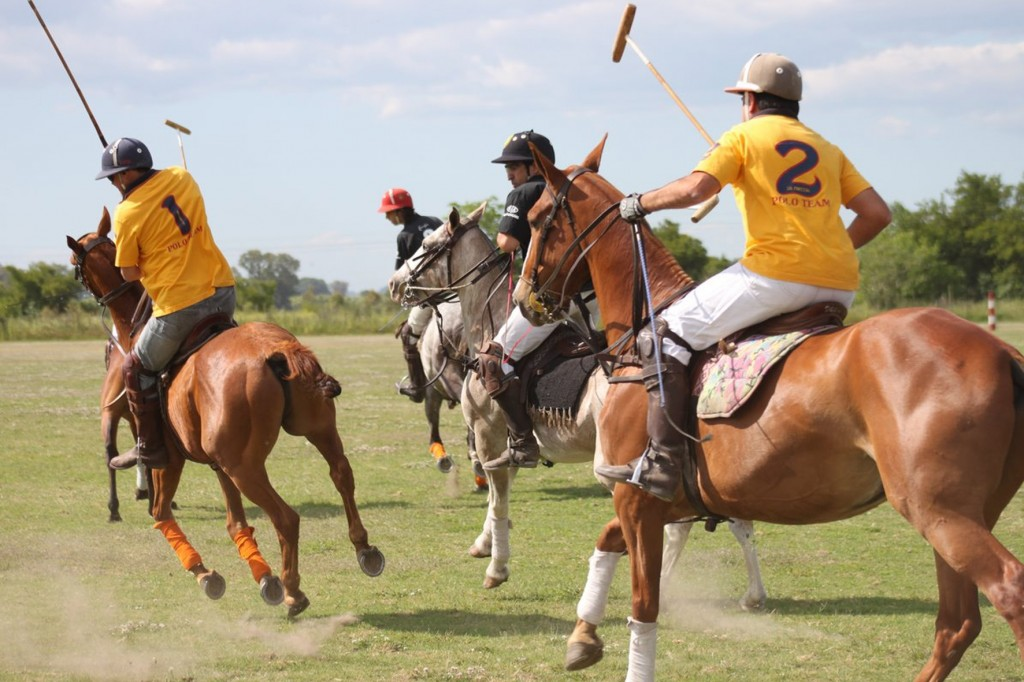POLO HANDICAP