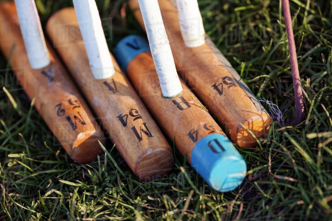 How to choose a Polo Mallet?