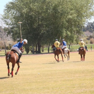All you need to know about a Polo Match | Argentina Polo Day