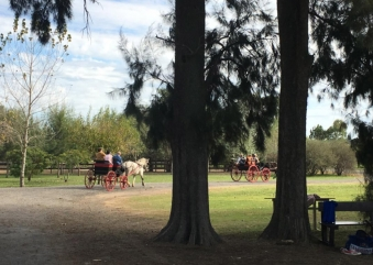 What to do in an estancia?