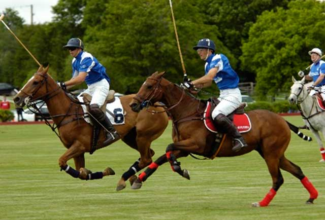 NATURAL AIDS TO PLAY POLO