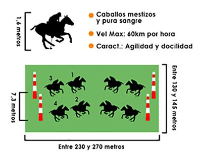 cancha-polo