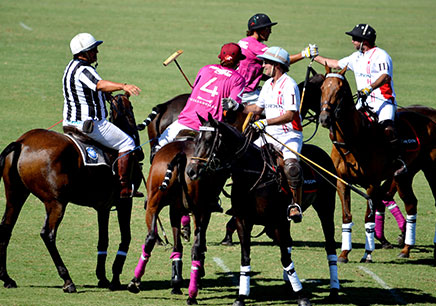The basic rules of the Polo sport