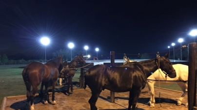 Horses Night Vision | Argentina Polo Day