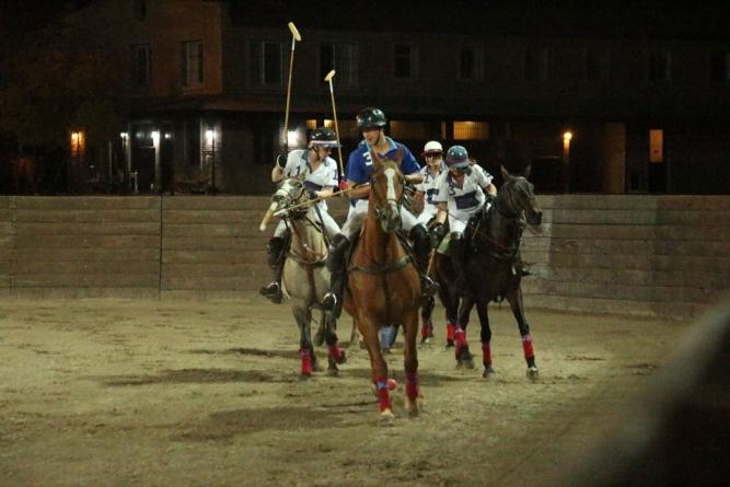 Shedding light on horses night vision