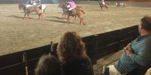 Arena Polo and Polo Night!