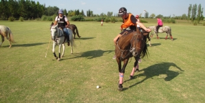 Why Polo is the best in delivering bonding experiences for corporate groups