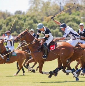 Curiosities & Polo History | Argentina Polo Day