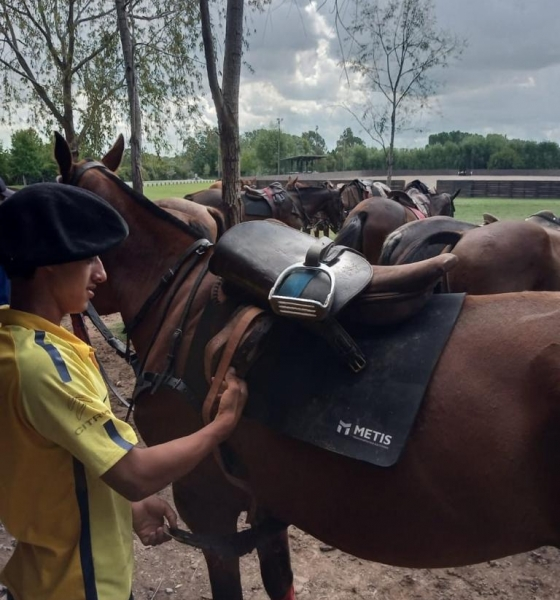 How to prepare the horse for a polo match?