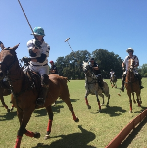 What Does Polo Mean?