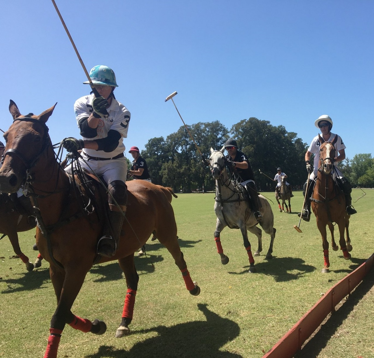 polo players during a game in argentina
