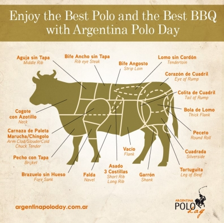 Enjoy the Best Polo & the Best BBQ with Argentina Polo Day
