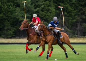 How Polo As a Sport Begins | Argentina Polo Day