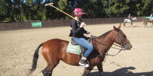 Do Something Special In Your Trip, Do Polo! Argentina Polo Day