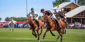 How Polo is Played
