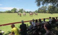 Argentina Polo Day: Looking overseas!