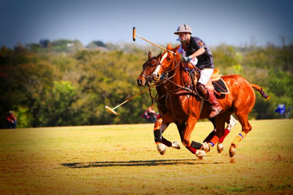 Some Basics Polo Rules | The More You Know
