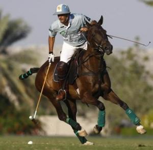 caballo de polo