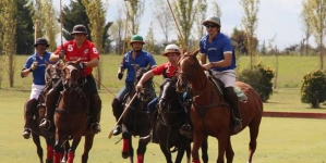 Polo Curiosities | Argentina Polo Day