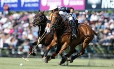 Características Básicas del Polo | Argentina Polo Day
