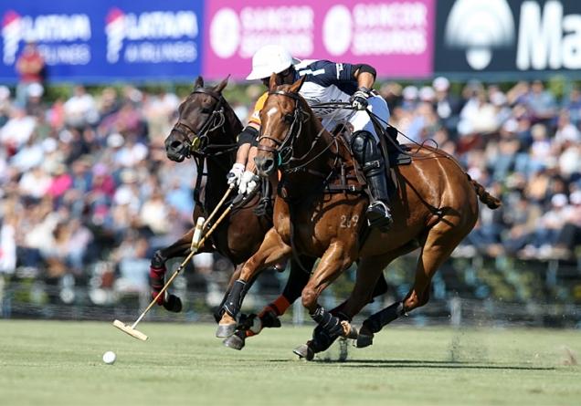 Características Básicas del Polo   Argentina Polo Day
